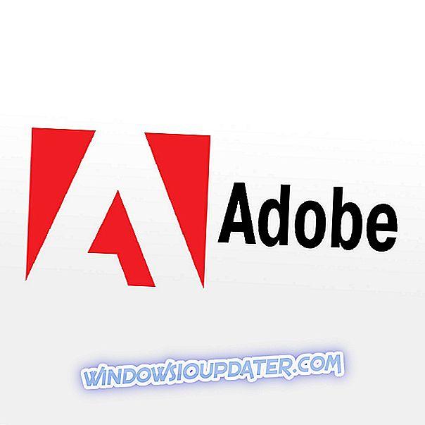 Adobe-verkkoon liittymisen yhteydessä tapahtui ongelma [Fix]