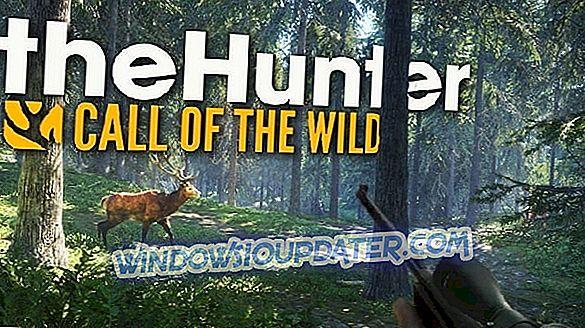 Volledige oplossing: The Hunter: Call Of The Wild start niet op Windows 10, 8.1, 7