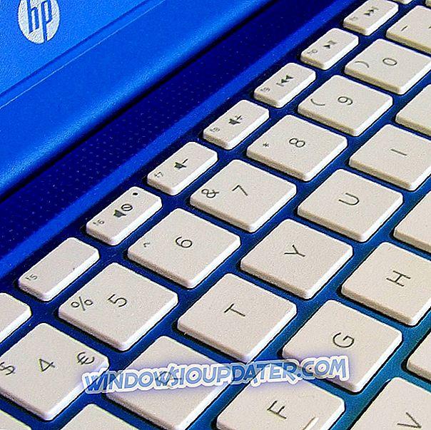 Как исправить ошибку HP HIDClass 0x800703e3 в Windows 10
