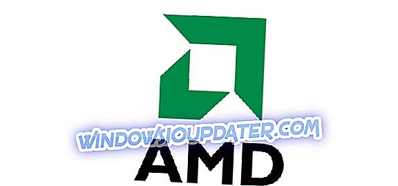 FIX: Windows 10, 8.1 में AMD ड्राइवर अपडेट डिस्प्ले इश्यूज