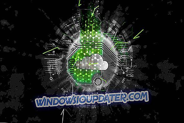 5 kõige paremast MKV mängijast Windows 10 jaoks [FRESH LIST]