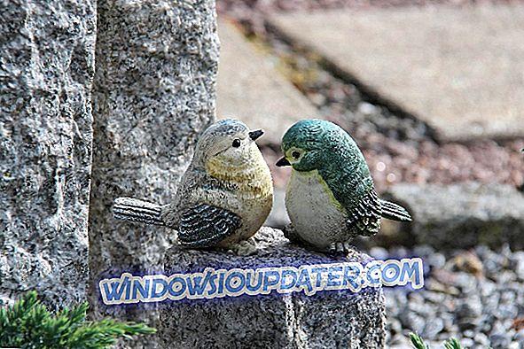 5 najbolji popis ptica softver za Windows 10 PC