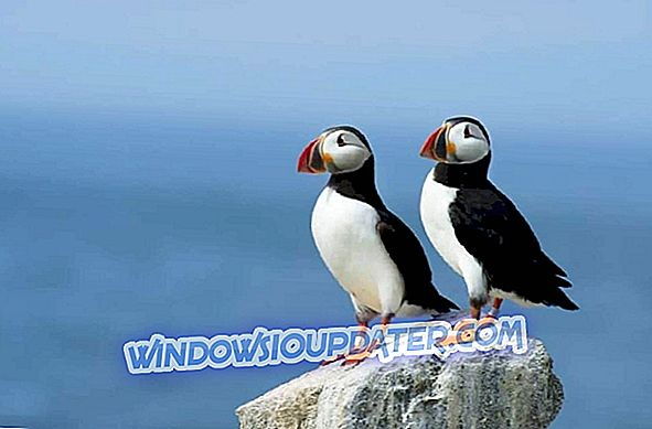 5 alat perangkat lunak terbaik untuk mengkloning Windows 10