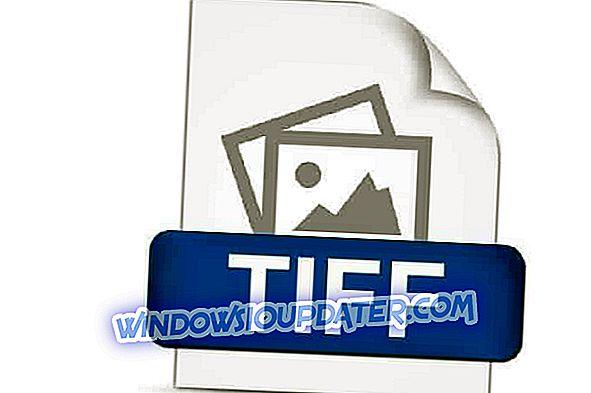 So öffnen Sie TIF-Dateien in Windows 10 ohne Abstriche bei der Qualität