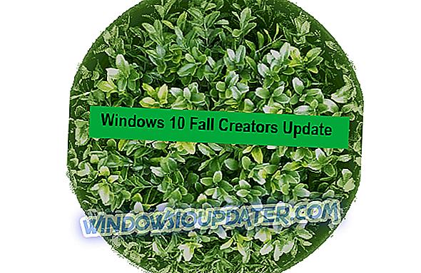 So blockieren Sie die Installation von Windows 10 Fall Creators Update