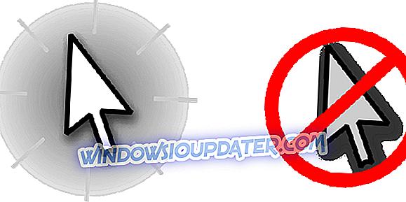 Peles rādītājs pazūd Windows 8.1, 8, 7 [Fix]